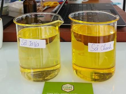 bán buôn tinh dầu sả các loại ( Java, lemongrass)